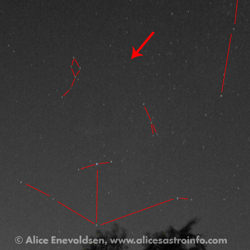 Possible Nova in Delphinus ©2013 Alice Enevoldsen